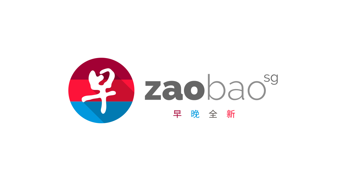 https://projectdignity.sg/wp-content/uploads/2019/06/zaobao.png